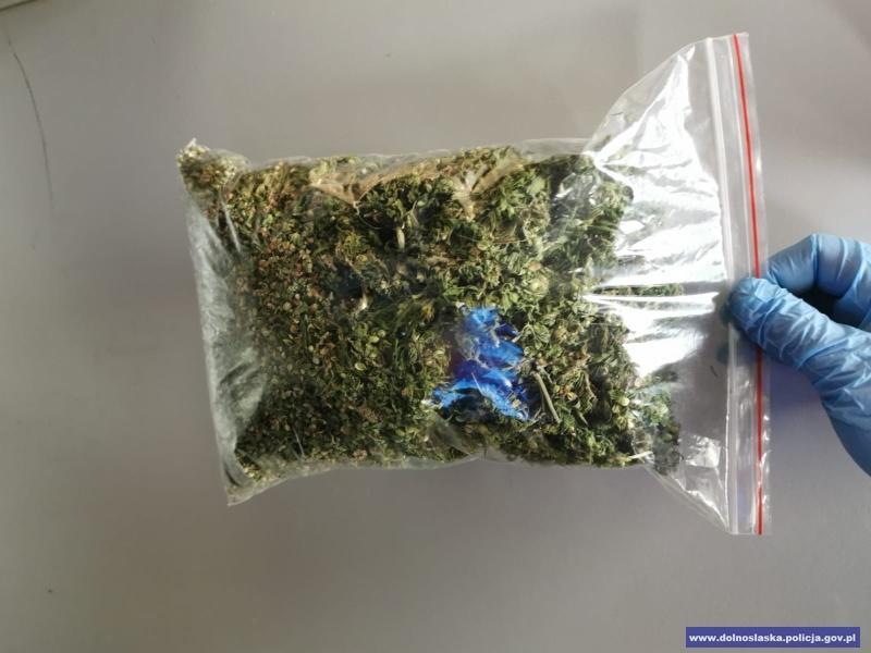 """Narkotyki """"znalezione wlesie"""""""