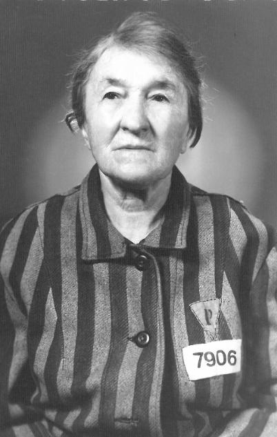 Nauczycielka wobozowym pasiaku – Stefania Tajcher